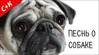 """""""Песнь о собаке"""" - стих С. Есенин."""
