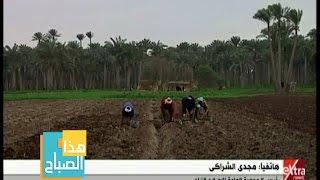 رئيس «الإصلاح الزراعي»: نطالب الدولة بالتدخل لبناء مصنع أسمدة تعاوني وتعتبرنا مستثمر أجنبي