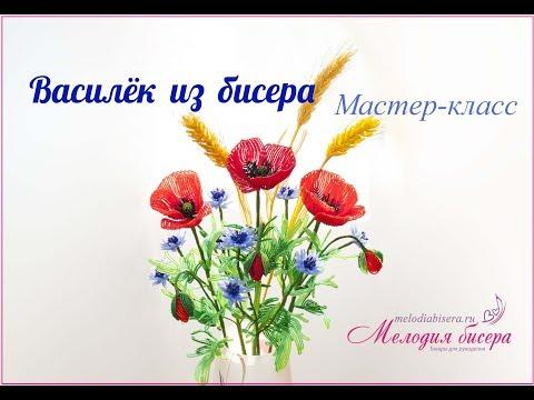 василёк фото цветов в букете