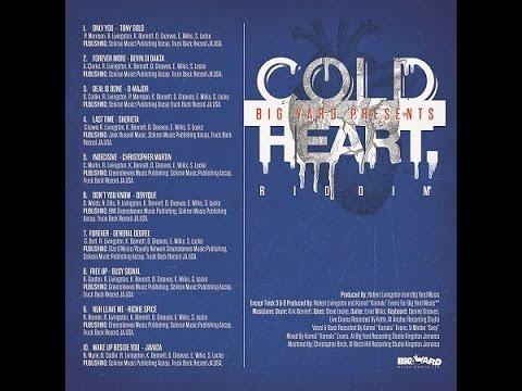 COLD HEART RIDDIM MIX FT. BUSY SIGNAL, DEVIN DI DAKTA, JAVADA & MORE (DJ SUPARIFIC)