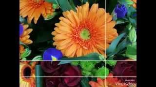 Красивые букеты цветов купить в Ижевске(Подробности в группе: http://vk.com/udmflower., 2015-11-21T14:42:37.000Z)