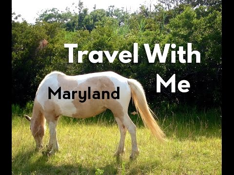 Travel With Me- Maryland Vlog