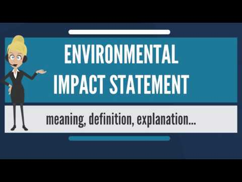 What is ENVIRONMENTAL IMPACT STATEMENT? What does ENVIRONMENTAL IMPACT STATEMENT mean?