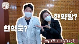 서울약령시 직업탐구 1편! (한약방&한약국)