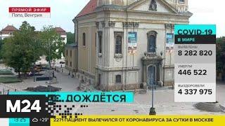 Что происходит в Ватикане в период пандемии коронавируса - Москва 24
