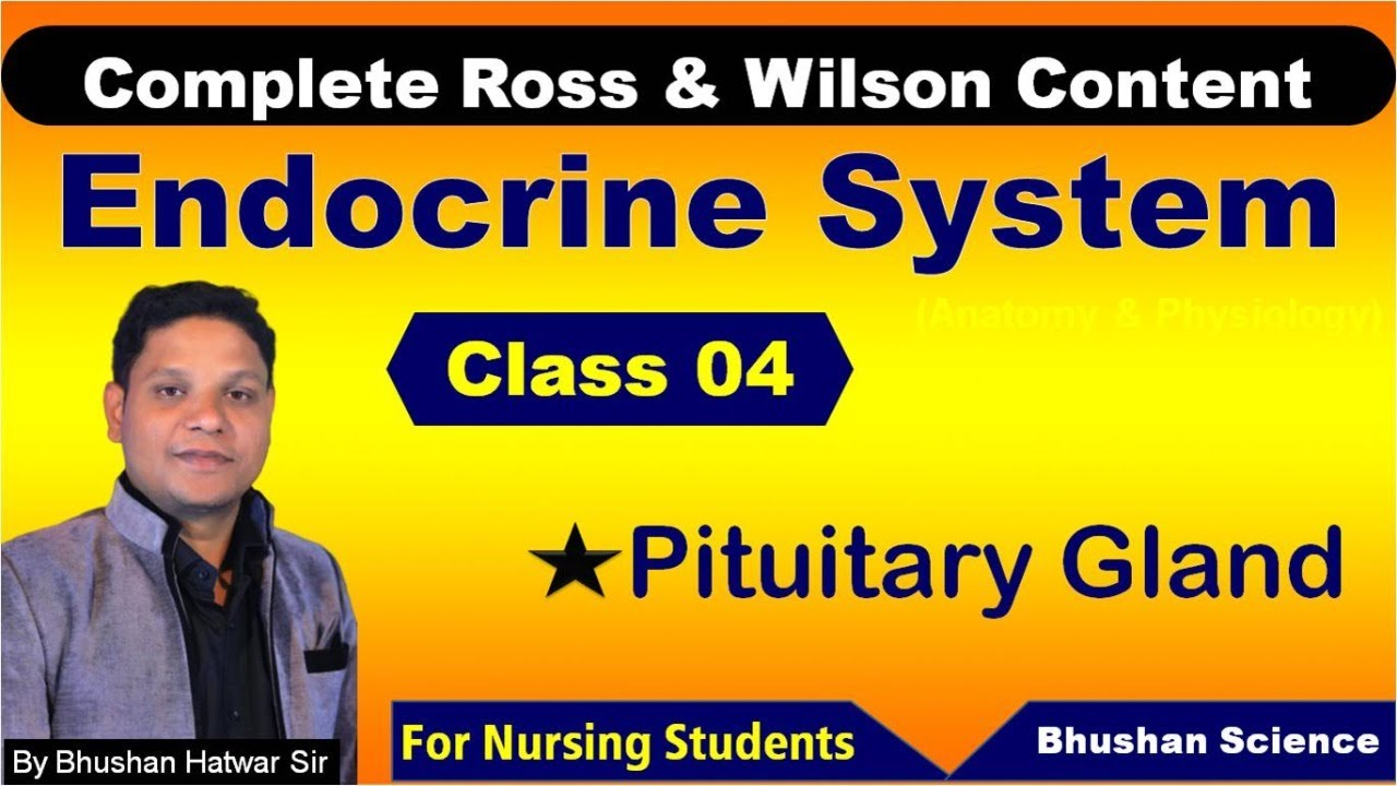 PART 4 : Endocrine System | Nursing Online Classes | ROSS & WILSON Anatomy & Physiology
