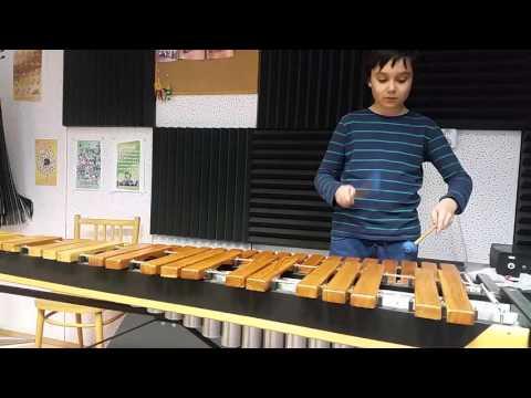 Adam hraje na marimbu