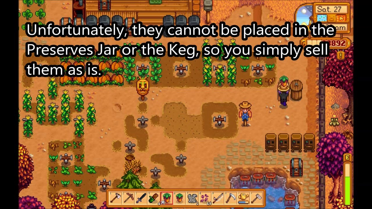 How To Grow The Sweet Gem Berry Stardew Valley Youtube Alas, sweet gem berries can't be processed; how to grow the sweet gem berry stardew valley