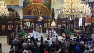 Holy Saturday Morning Liturgy