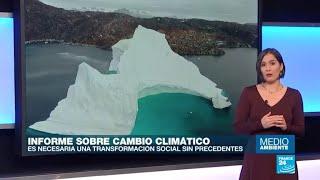 """ONU: """"Se nos acaba el tiempo para evitar un desastre ambiental"""""""