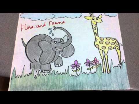 Biome : Tropical Grasslands/Savannah  Paper Slide Video (horizontal)