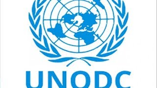 UNODC Builds Capacity of Trainers on Gender in Terrorism - THISDAYLIVE