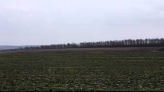 17 12 11 Agroprofi рапс в засуху