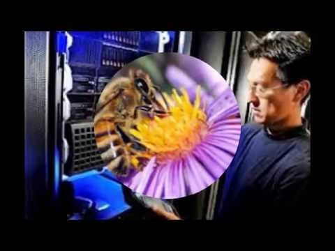 "Super-Computer & How it's ""FUNK""-Your Mind :("