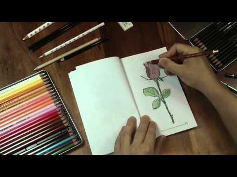 """Blumen zeichnen mit """"Praxis Zeichnen – Übungsbuch 14"""""""