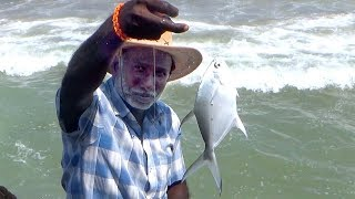 FASTEST inshore Fishing EVER!! JACK FISH