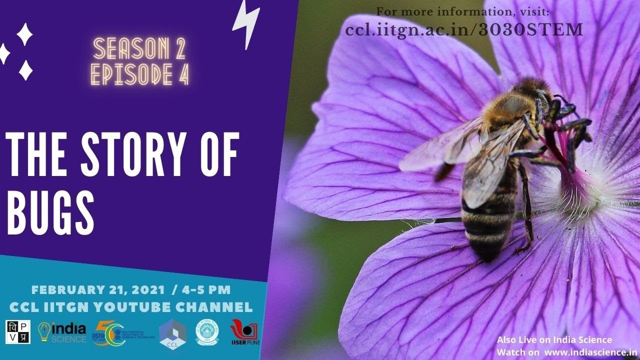 Download The Story of Bugs । 3030 STEM Season 02 Episode 4