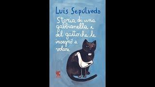 Storia di una gabbianella e del gatto che le insegnò a volare Audiolibro Completo PARTE SECONDA