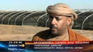 Восстанавливают популяцию исчезающей дрофы(В Южном Казахстане восстанавливают популяцию исчезающей дрофы-красотки., 2011-10-05T04:28:45.000Z)