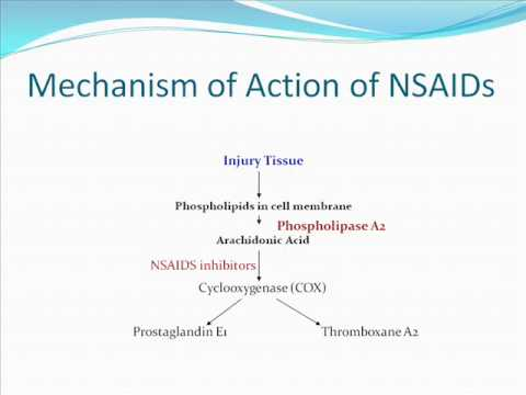 NSAIDs & Inflammatory Pain Management - CNCP c/o 2013 - Team 5