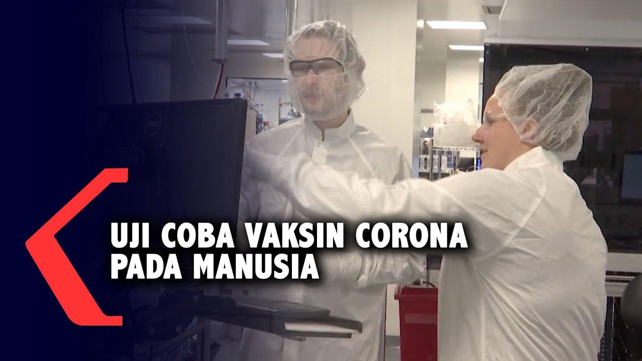 Uji Coba Pertama Kali Vaksin Corona Pada Manusia