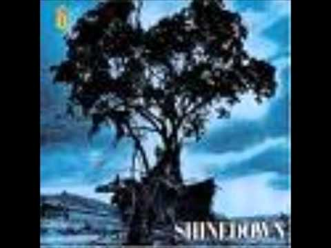 Shinedown - 45 (Acoustic)