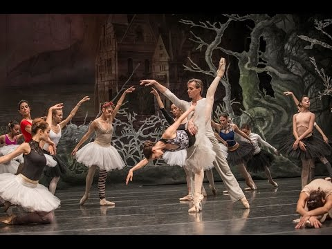 Dentro de un ensayo del Lago de los Cisnes - Ballet de Santiago 2015
