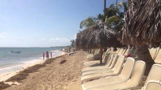 Punta Cana Beach with Seaweed - September 2015