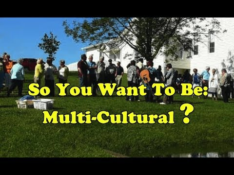 So You Want To Be Multicultural?