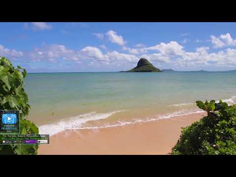 WORLD S WONDERS In 4K   1HR Nature Relaxation™ UHD Music Video