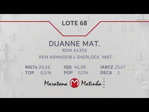 LOTE 68 Maratona Matinha