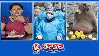Doctors Tests Corona Postive In Telangana, Monkeys Addicted To Humans Food డాక్టర్లనూ వదలని కరోనా..మనుషుల తిండికి మరిగి...