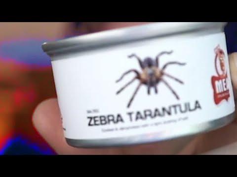 TARANTULA IN A CAN (Mail Time #18)