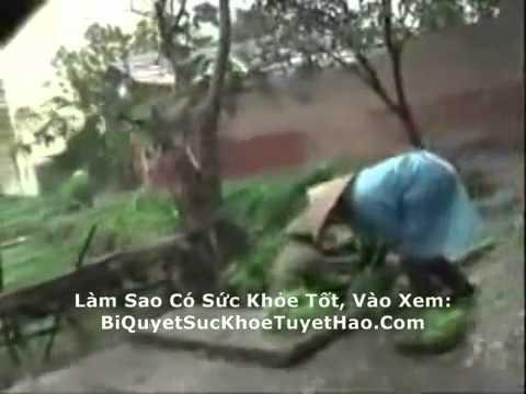 Thuc Pham O Nhiem Doc