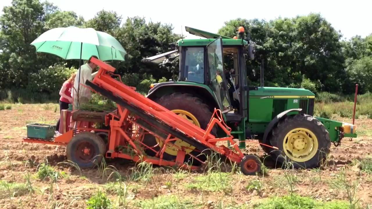 garlic harvesting machine