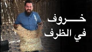 الخروف المشوي في سلطنة عمان  - الشواء العماني 🇴🇲 موسم ٤/ ح٣