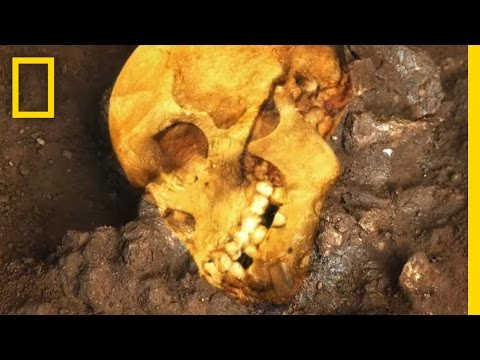 An Ancient Human Skull | National Geographic