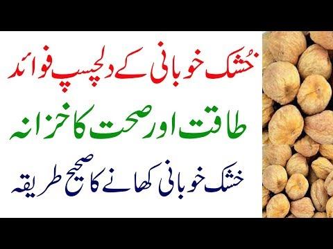 Khushk Khubani(dried Apricots)health Benefits In Urdu   Sukhi Khubani Ke Fayde