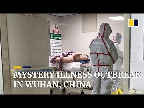 Mystery illness outbreak in Wuhan, China