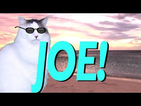HAPPY BIRTHDAY JOE! - EPIC CAT Happy Birthday Song