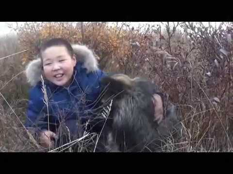 Зедгенизов Е Песнь о собаке.Центр образования с. Канчалан