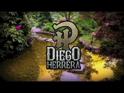 Diego Herrera - Somos Ajenos (Video Lyric)