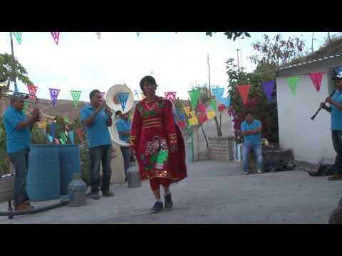 MUSICA DE JARIPEO al 100% con Banda San Francisco de Huehuetlan el chico
