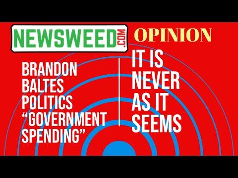 """""""Perilous Dissent"""" Brandon Baltes on Politics August 11, 2021"""