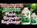 DuPont Cropmax PGR || Plant growth regulator ||  organic content natural nutrients, DuPont, PGR
