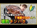 【堤防キジハタ】まず1本釣りたい人へ!キジハタの釣り方・ポイント・アクション方法
