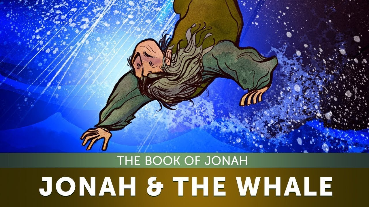 sunday lesson for children jonah and the whale the book