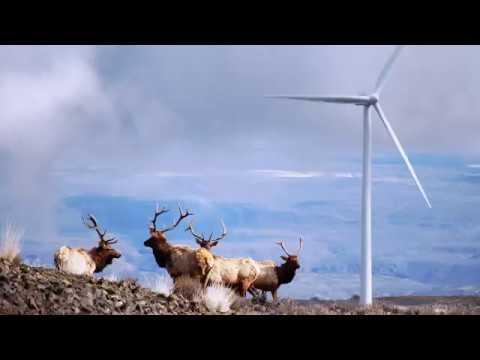 Wind Power Environmental Benefits | AWEA