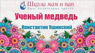 Ученый медведь. Константин Ушинский. Аудио сказка