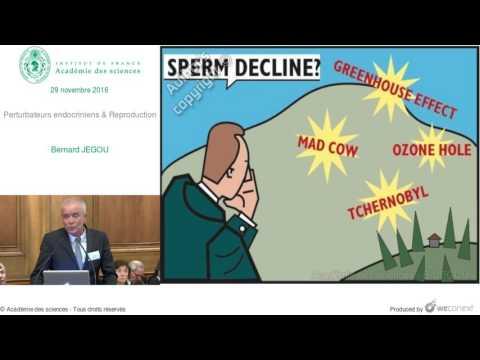[Conférence] B. JEGOU - Perturbateurs endocriniens & Reproduction
